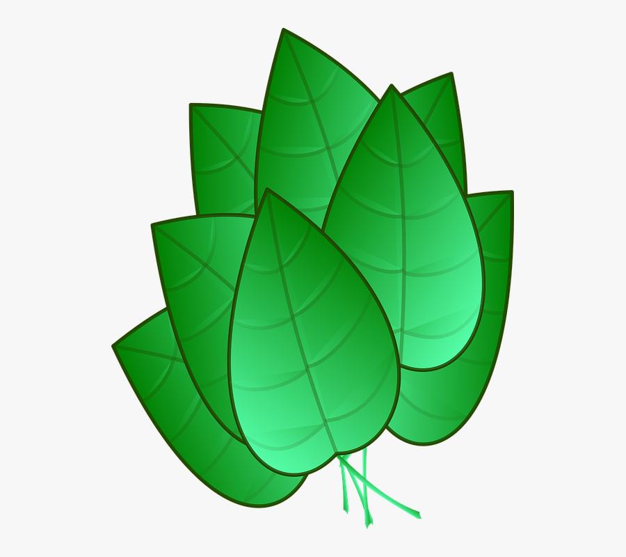 Green Leaves Clipart Tobacco Leaf.