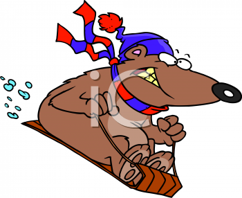 Cartoon Clipart Picture Of A Bear Riding On A Toboggan.