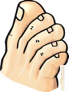 Clipart toe.