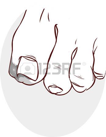 689 Toe Nails Stock Vector Illustration And Royalty Free Toe Nails.