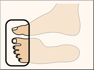 Clip Art: Parts of the Body: Toes Color Unlabeled I abcteach.