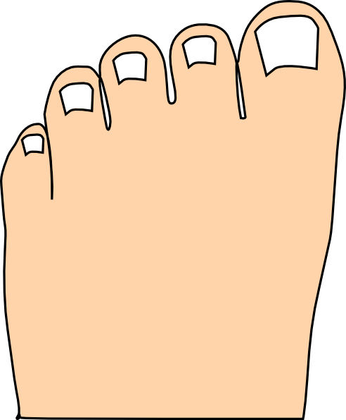 Fingers And Toes Clipart.