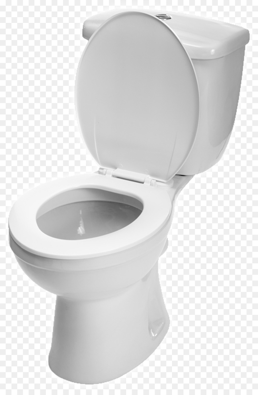 Flush Toilet Bowl Toilet & Bidet Seats B #33081.
