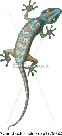 Vector Clipart of Tokay Gecko.