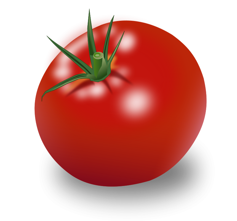 Free Clipart: Tomate.