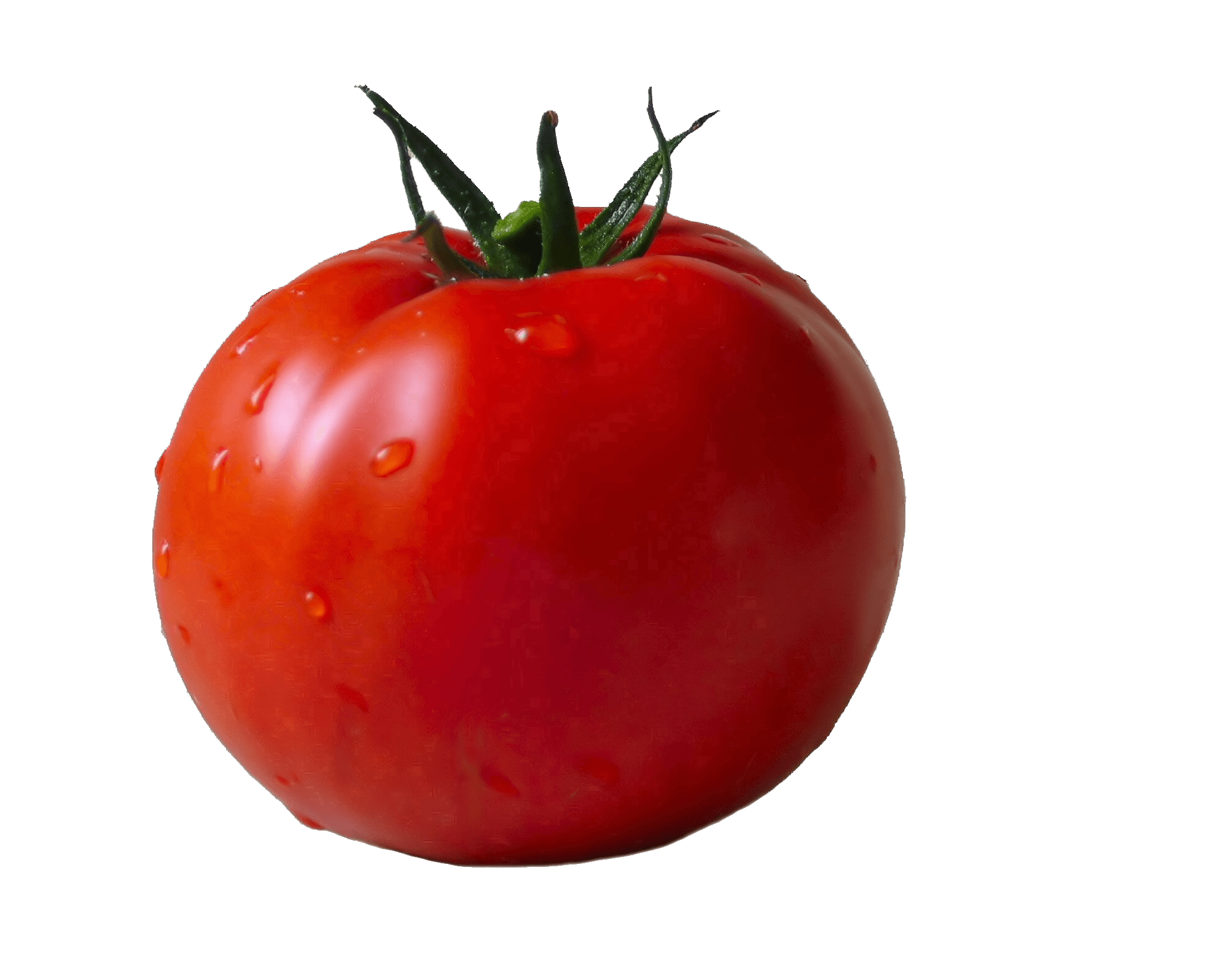 Tomate Png & Free Tomate.png Transparent Images #33787.