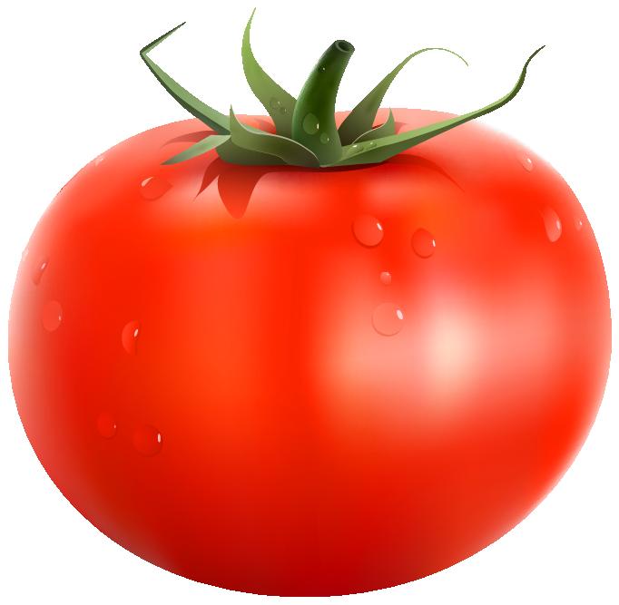 Tomato Clipart & Tomato Clip Art Images.