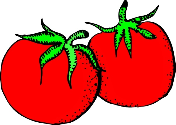 Tomatoes clip art Free vector in Open office drawing svg ( .svg.