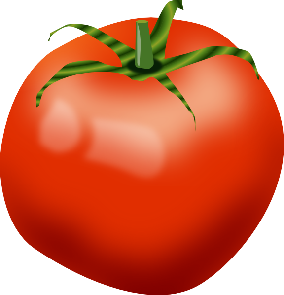 Tomato PNG Images Transparent Free Download.