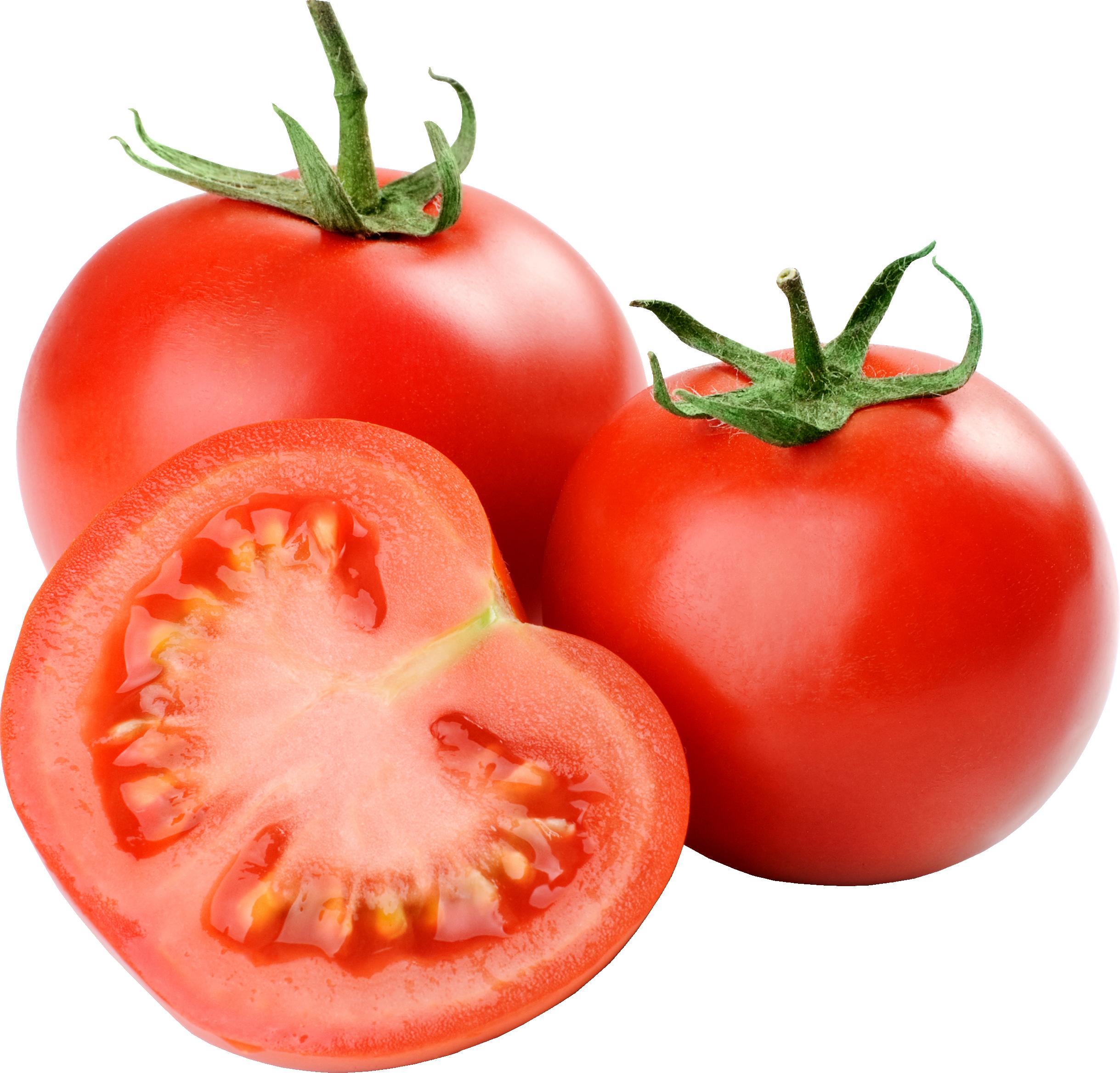 Tomato Clipart No Backround Clipground