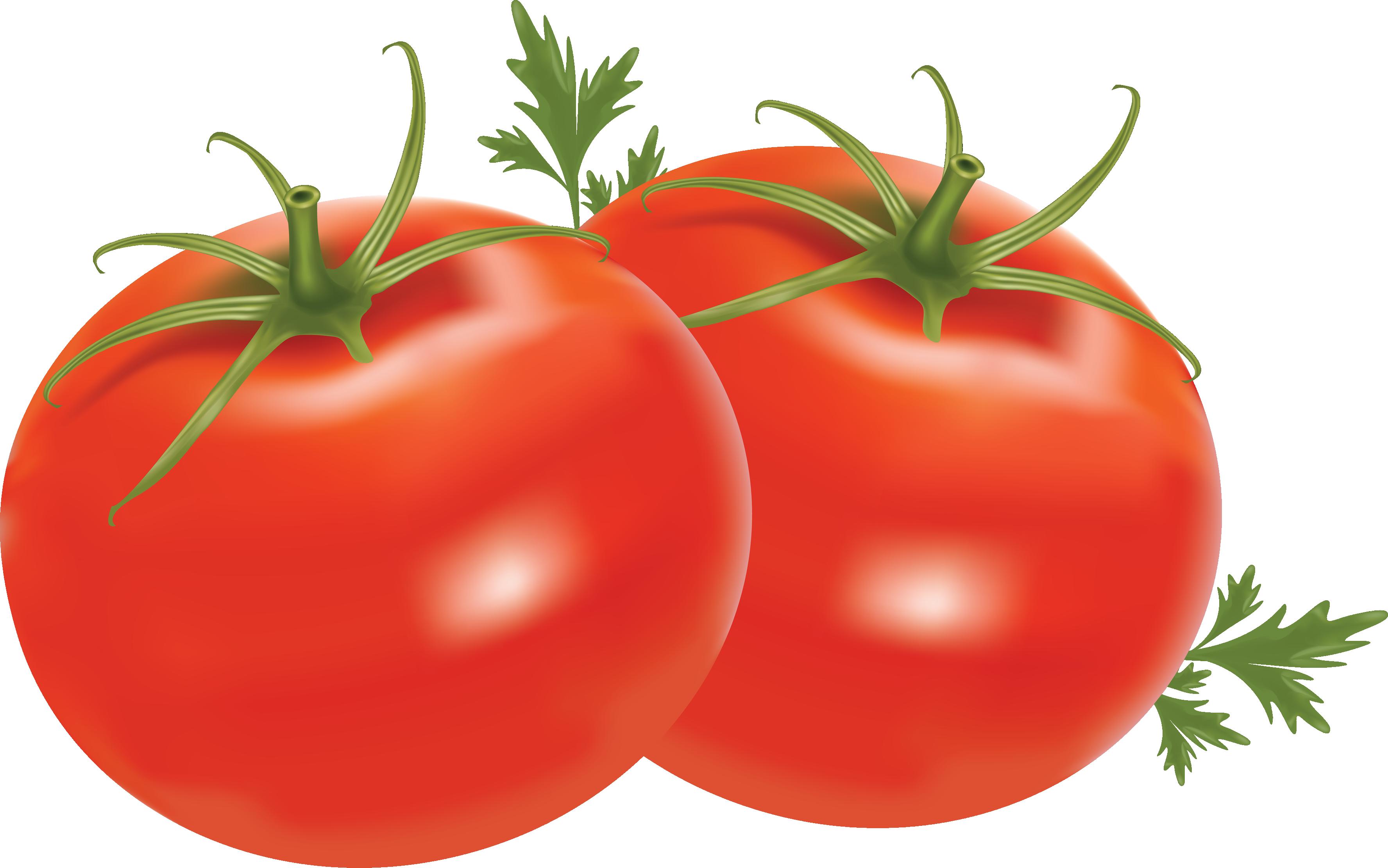 Tomato Clipart No Background.