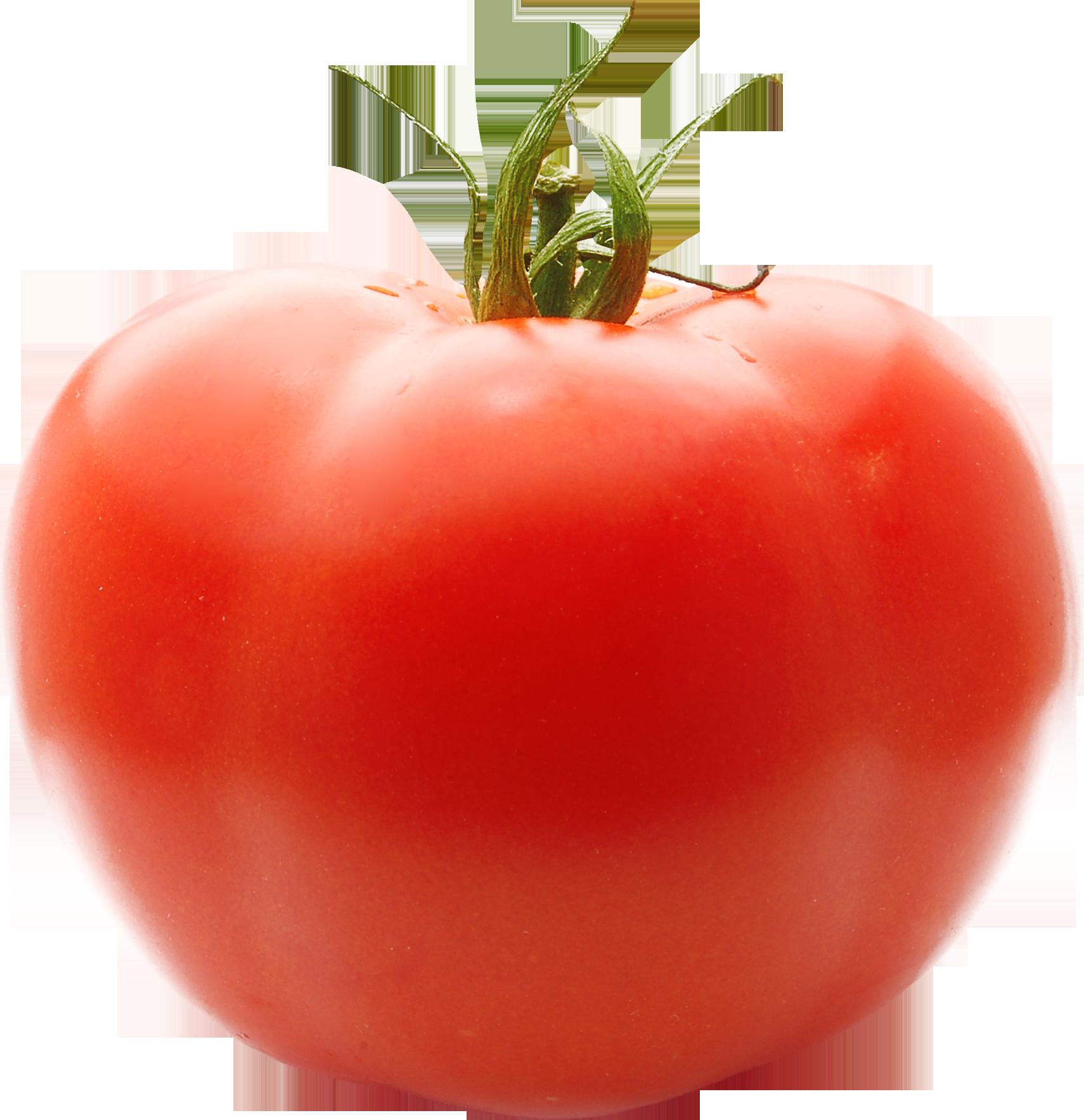 Tomato Clipart No Background Clip art of Tomato Clipart #4801.