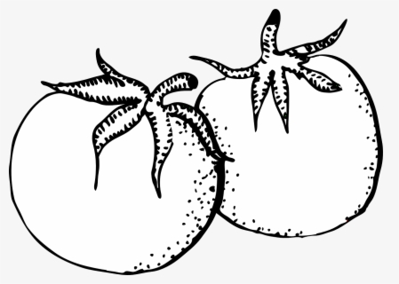 Free Tomato Black And White Clip Art with No Background.
