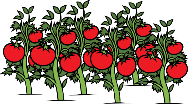 Red Tomato Plant Clipart