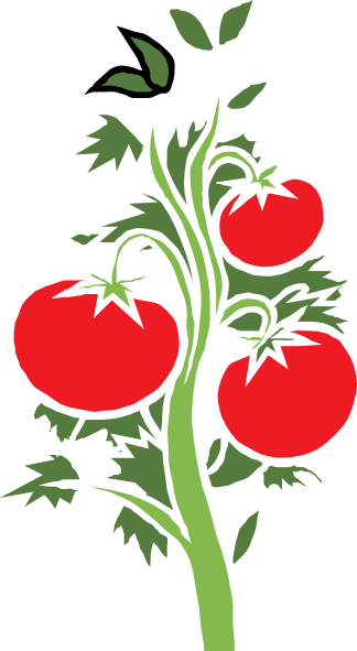 Red Tomato Plant Clipart.