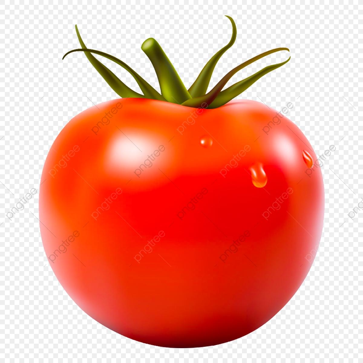 Tomato, Sauce, Tomato Sauce PNG Transparent Clipart Image.