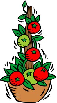 Showing post & media for Cartoon tomato plant clip art.