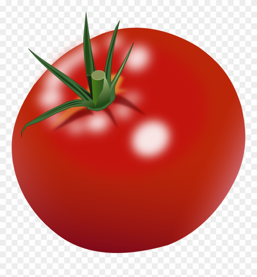 Tomato Clipart Png Black And White Download.