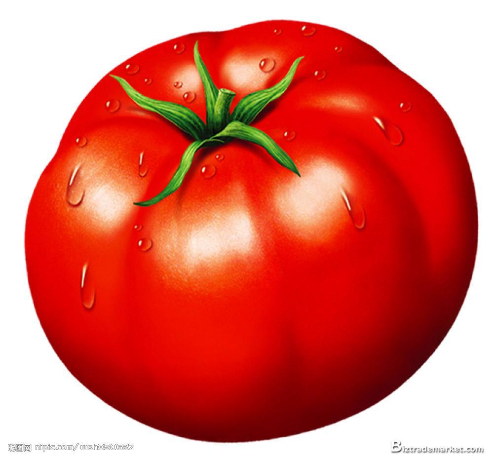 96+ Clipart Tomato.