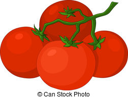 Tomatoes Illustrations and Clipart. 3,515 Tomatoes royalty free.