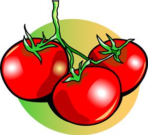 Tomato Clipart.