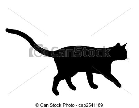 Tomcat Illustrations and Clipart. 570 Tomcat royalty free.