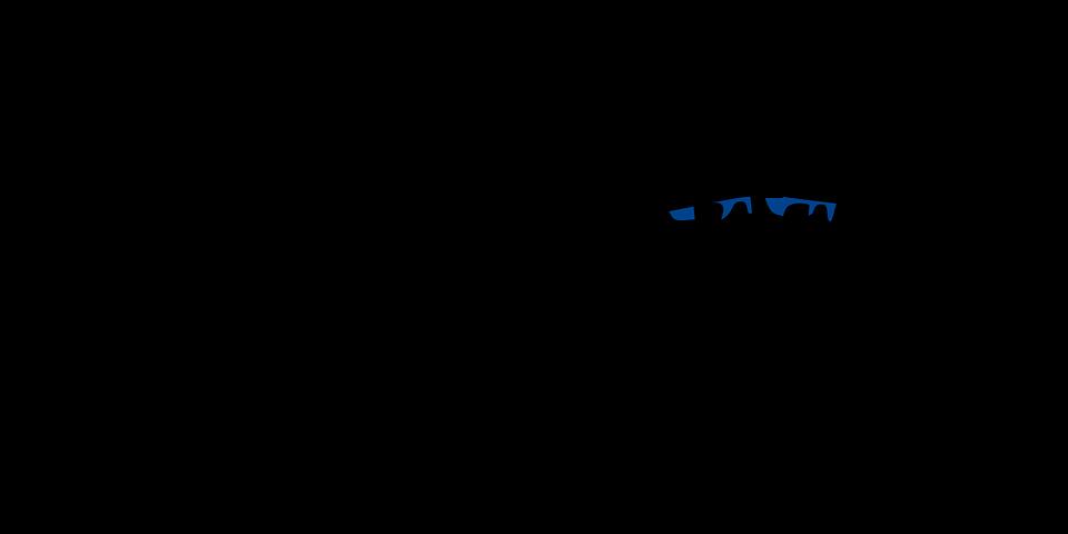 Free vector graphic: Tomcat, Plane, Fighter, Jet.