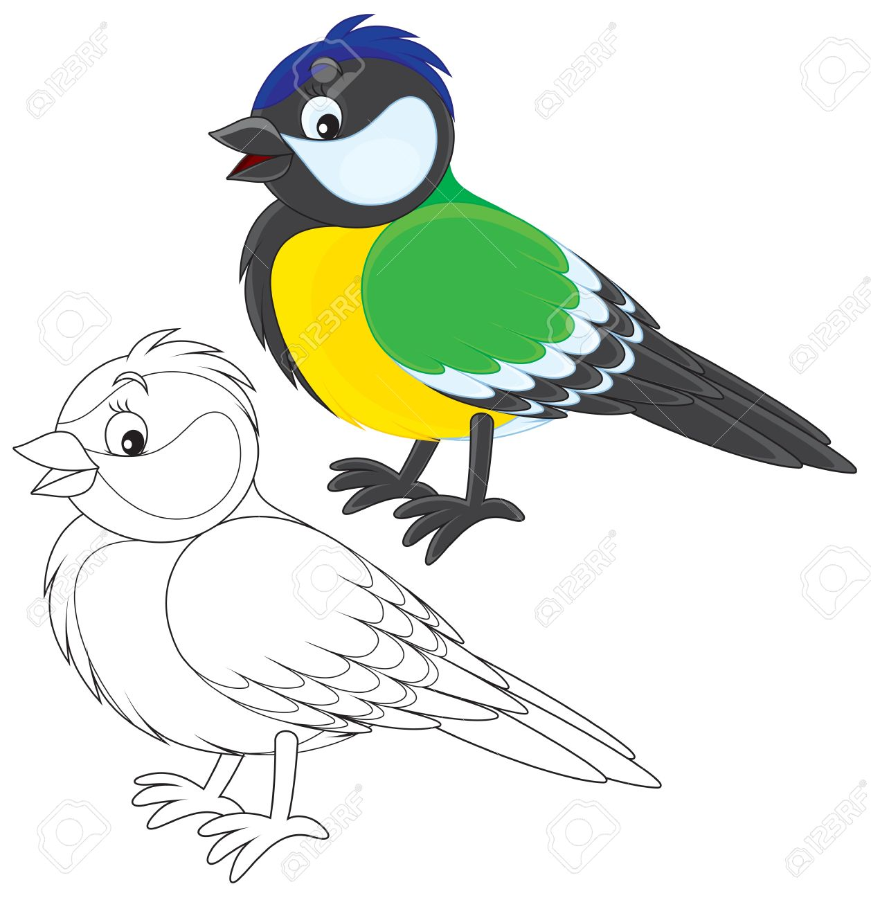 Tomtit Royalty Free Cliparts, Vectors, And Stock Illustration.