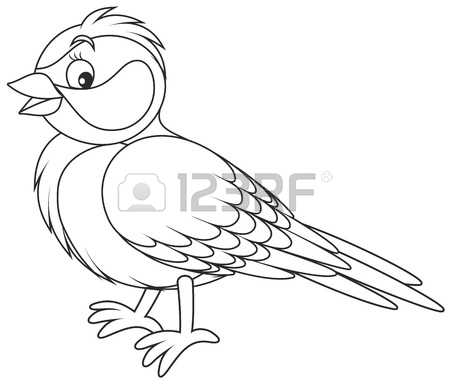 571 Tomtit Stock Illustrations, Cliparts And Royalty Free Tomtit.