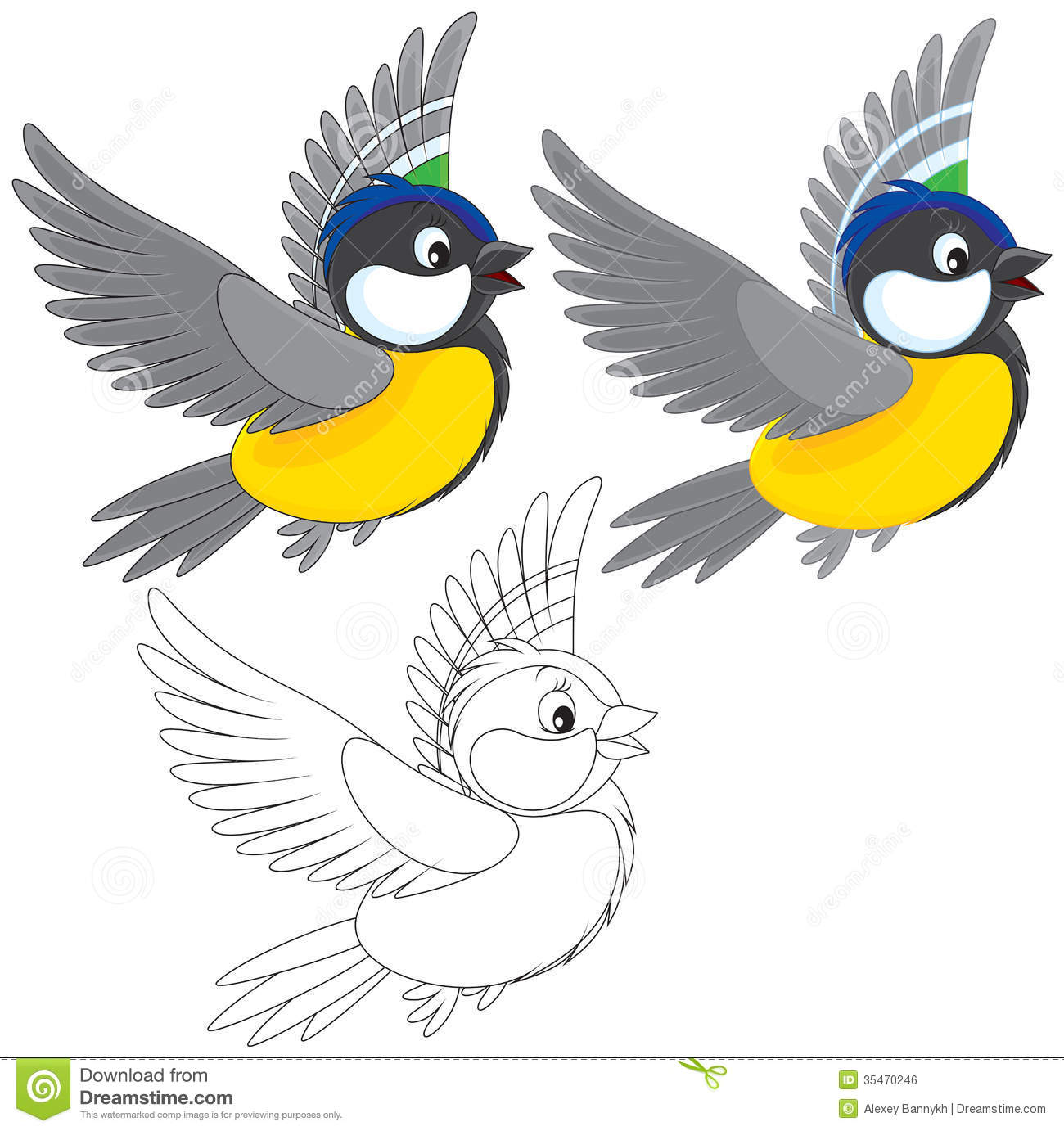 Tomtit Stock Illustrations.