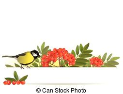 EPS Vector of Tomtit.
