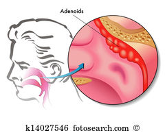 Tonsils Clip Art and Stock Illustrations. 92 tonsils EPS.