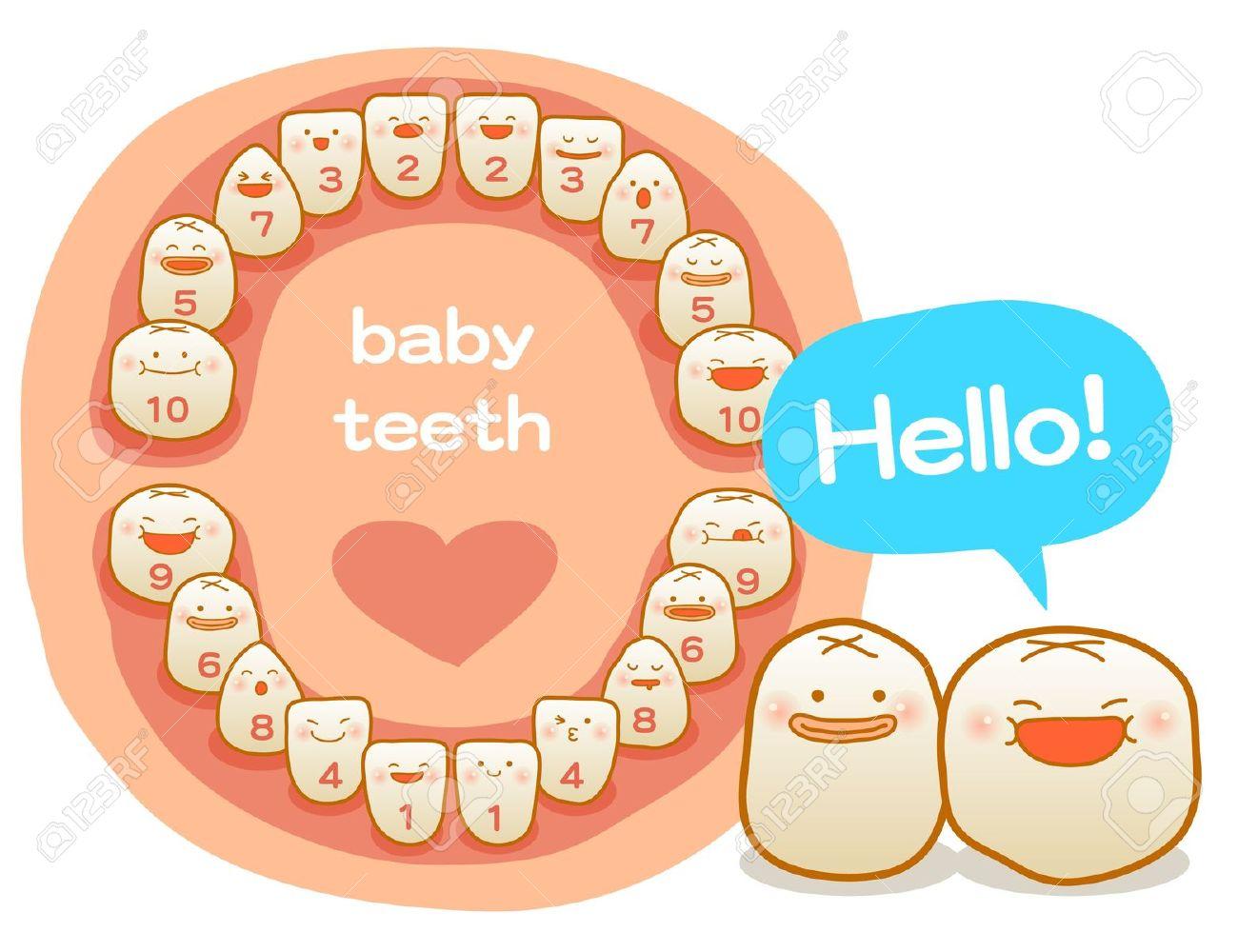 Baby Teeth, Vector Illustration, Brushing Teeth, Clean Teeth.