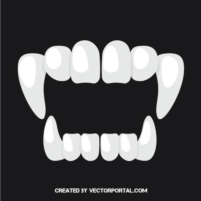 Sharp teeth vector image.