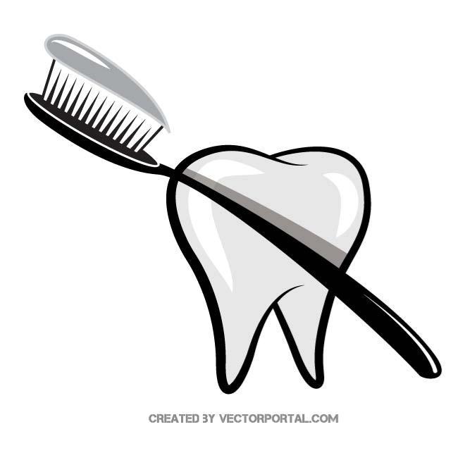 TOOTHBRUSH VECTOR GRAPHICS.