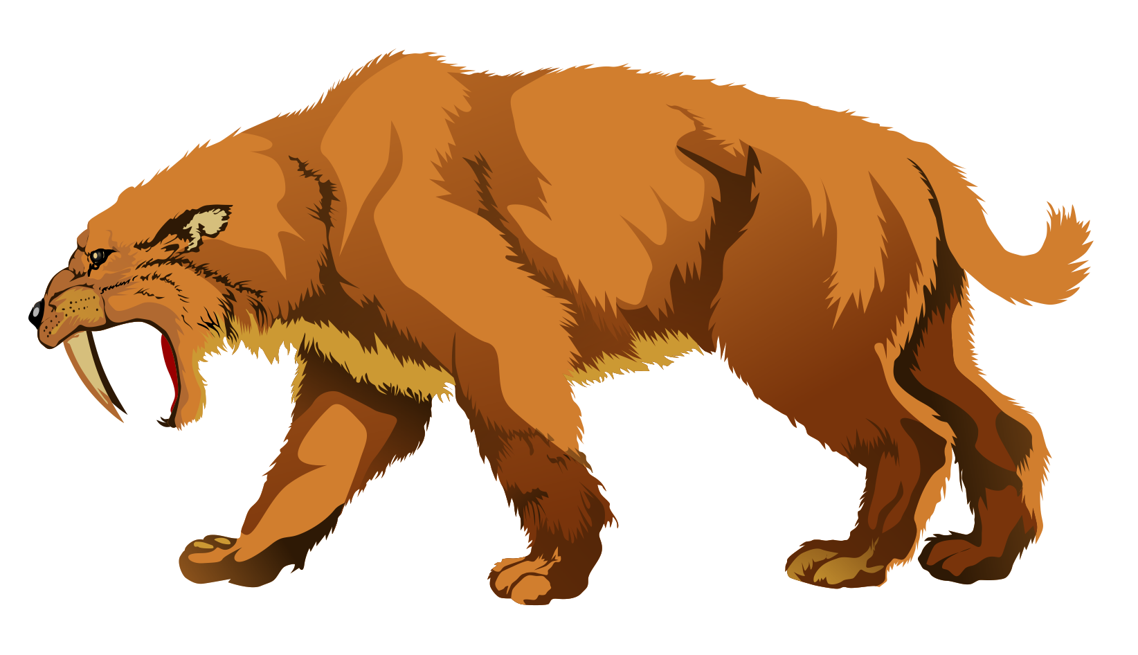 Sabre tooth tiger clipart.