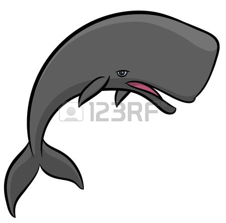 Toothed Whale Stock Illustrations, Cliparts And Royalty Free.
