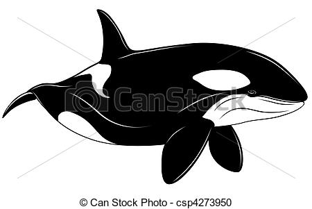 Toothed whale Illustrations and Clipart. 280 Toothed whale royalty.