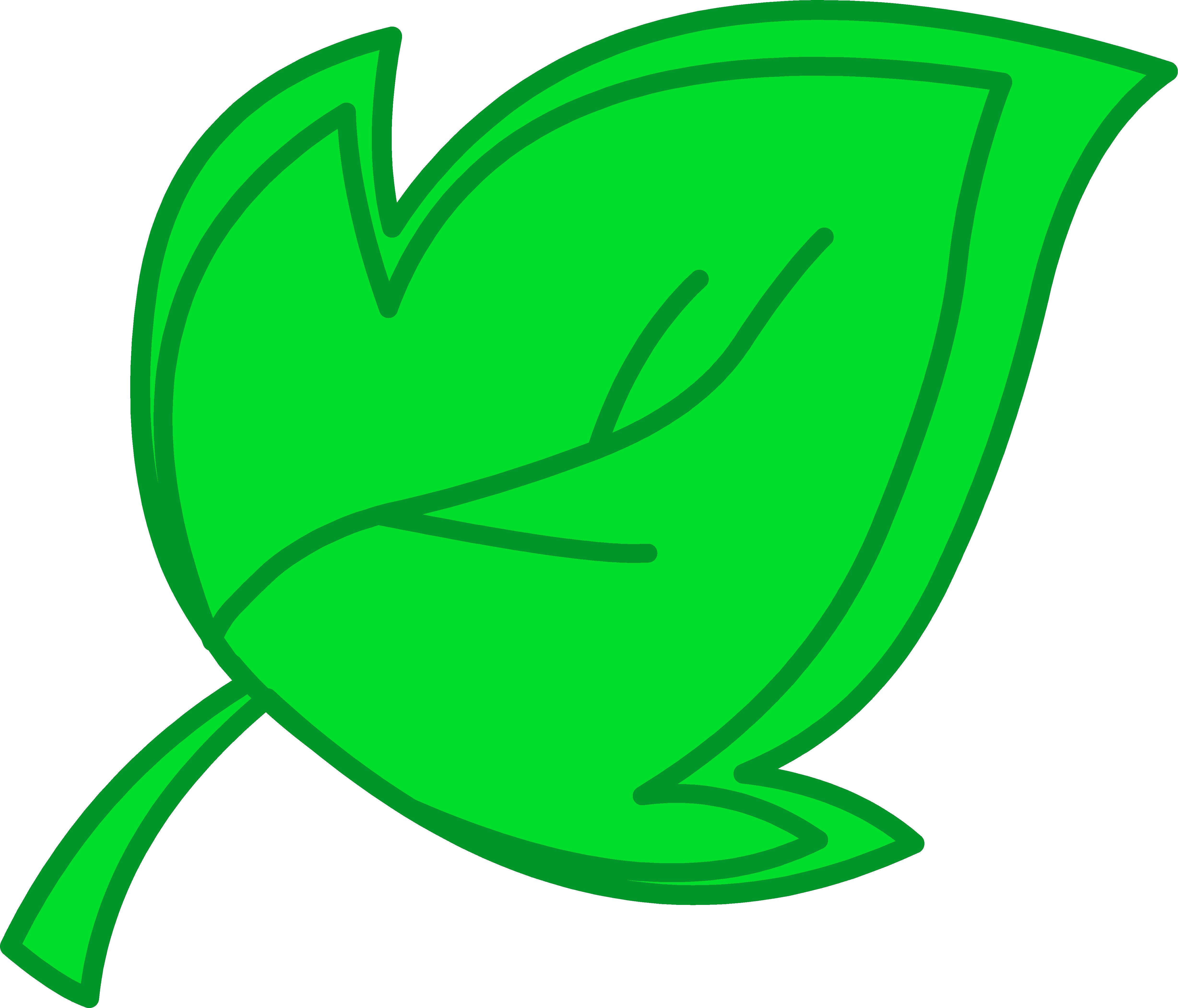 Leaf clipart dromgcb top.
