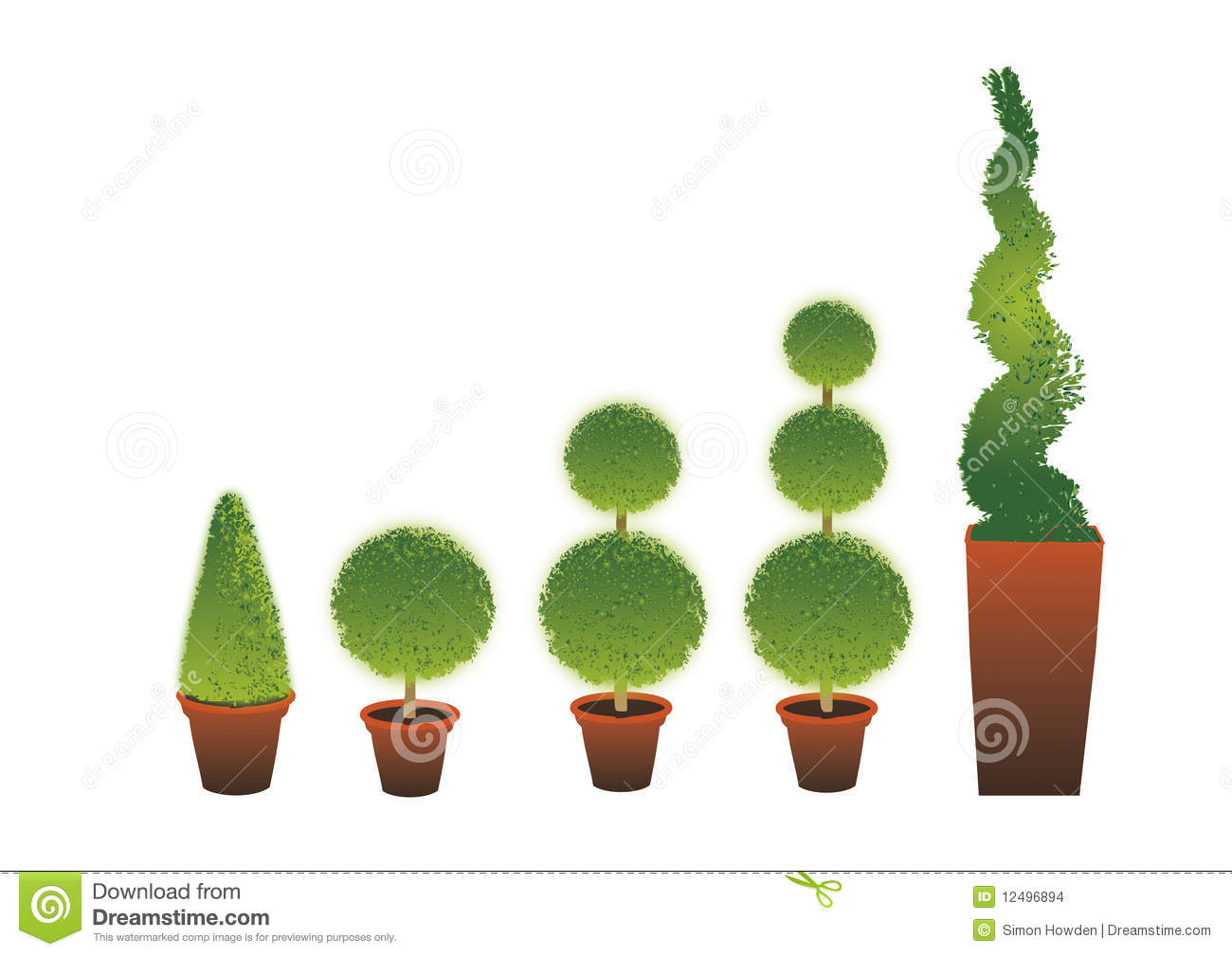 Topiary Stock Illustrations.