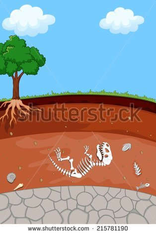Topsoil free vector download (1 Free vector) for commercial use.