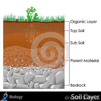 Topsoil Stock Illustrations.