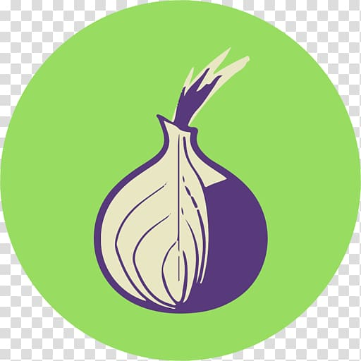 Purple and white onion illustration, Computer Icons Tor.