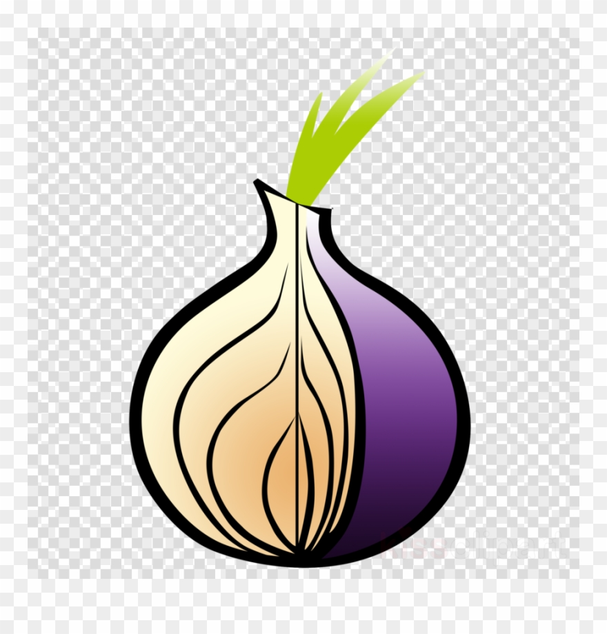 Tor Browser Icon Png Clipart Tor Bowser Transparent Png.