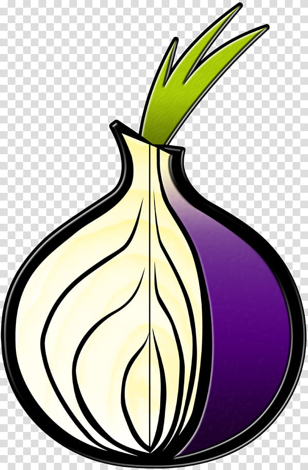Tor browser onion transparent background PNG clipart.