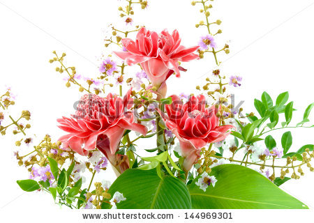 Flower Arrangements With Pink Torch Ginger. Stock Photo 144969301.