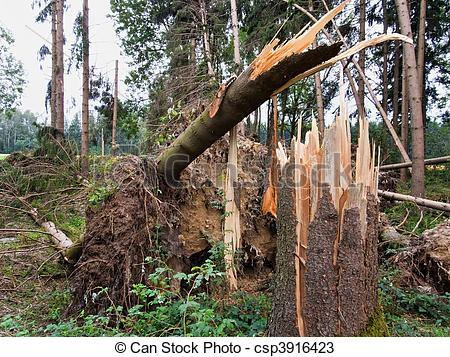 Storm damage clipart.