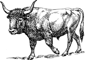 Aurochs Clip Art at Clker.com.