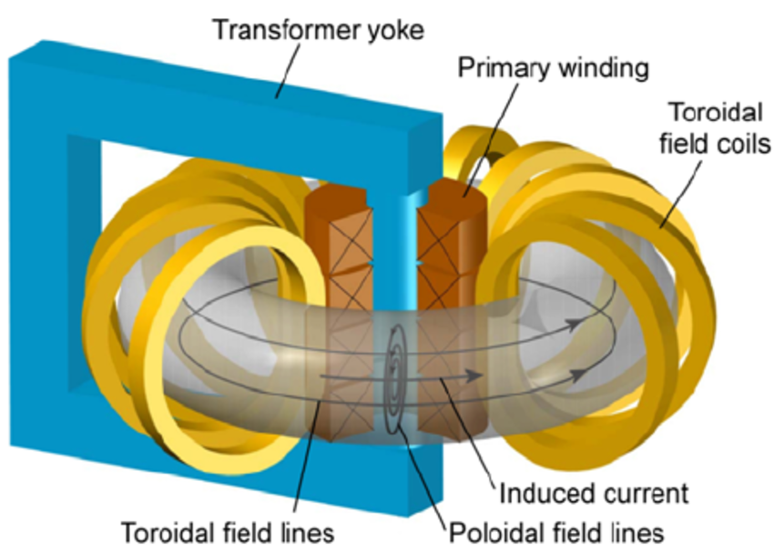 Schematic drawing of a tokamak.