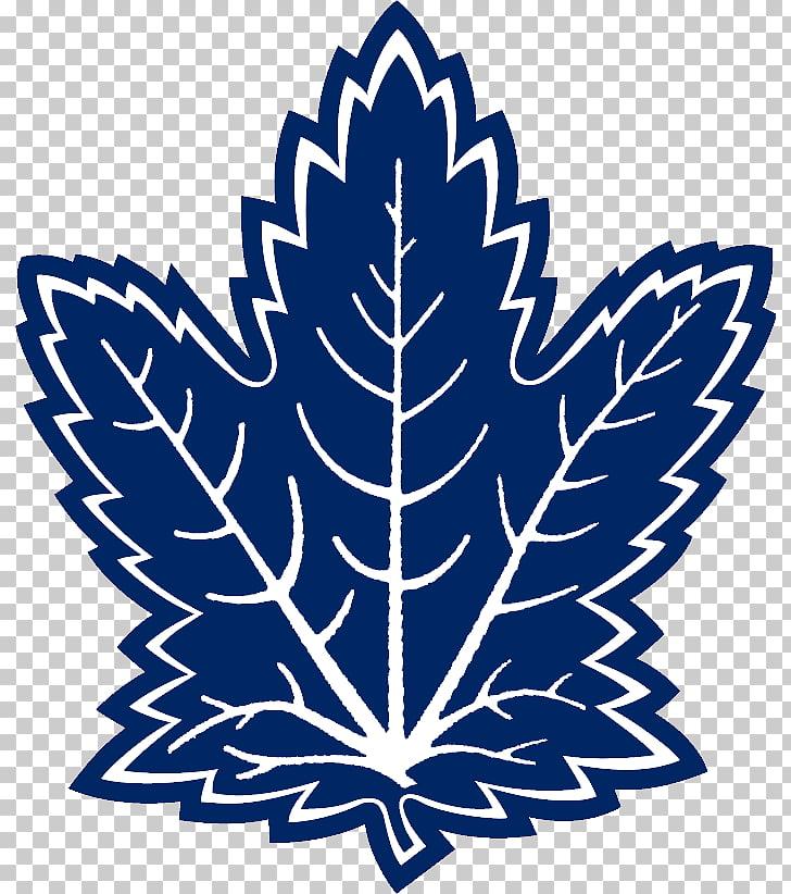 Toronto Maple Leafs MasterCard Centre National Hockey League.
